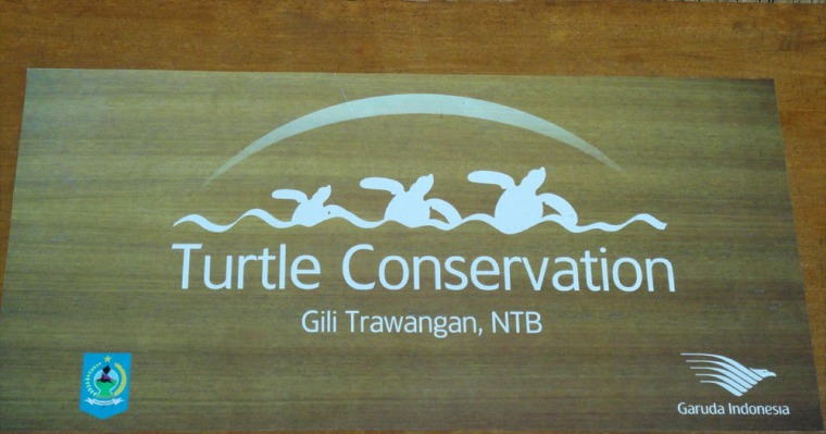 plang Turtle Conservation di Gili Trawangan