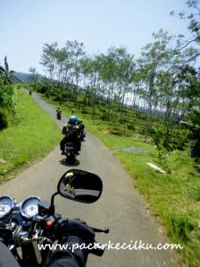jalan menuju curug pitu