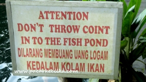 Larangan melempar koin ke dalam kolam