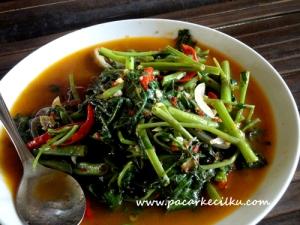 Cah Kangkung