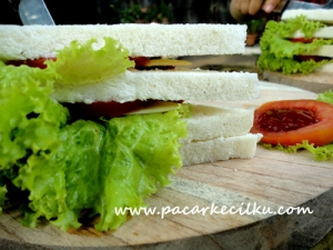 sandwich ala garden juice