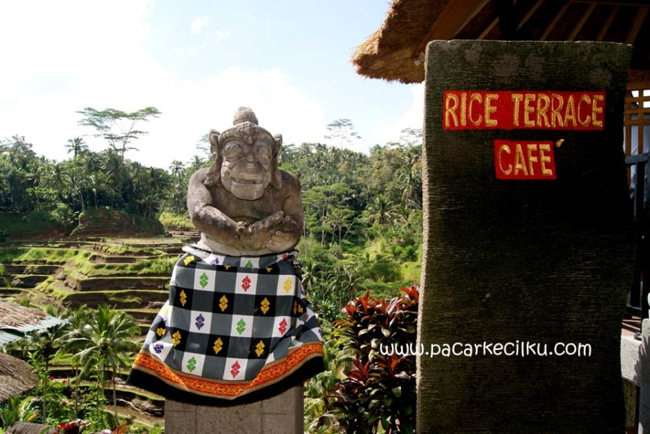 Rice Terrace Cafe, Ceking, Tegallalang