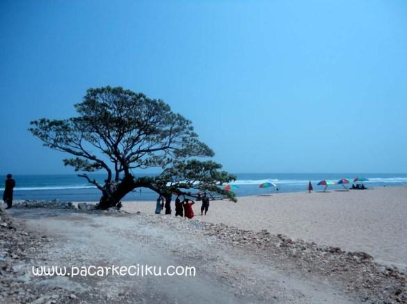 Pantai Poktunggal Tepus